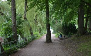 Wald Park Spree Berlin